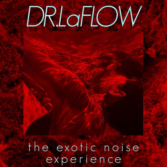 The Exotic Noise Experience cover art