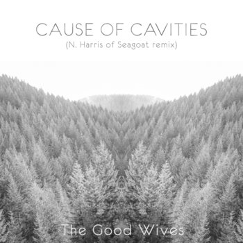 Cause of Cavities (N. Harris of Seagoat remix) cover art