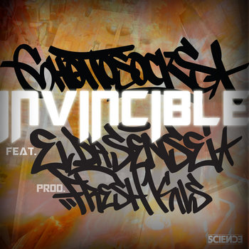 The Invincible DJ-Pack cover art