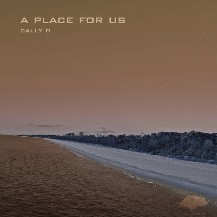 A Place For Us EP cover art