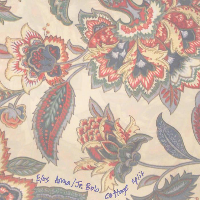 NLS006: Cottage Split cover art