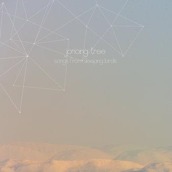 Songs from sleeping Birds cover art