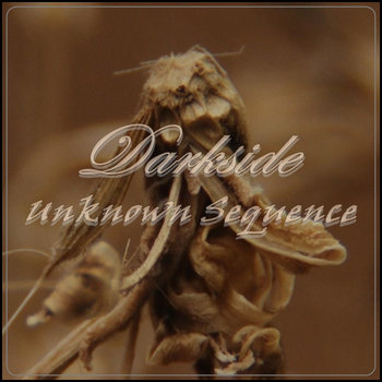 Unknown Sequence (LP) cover art