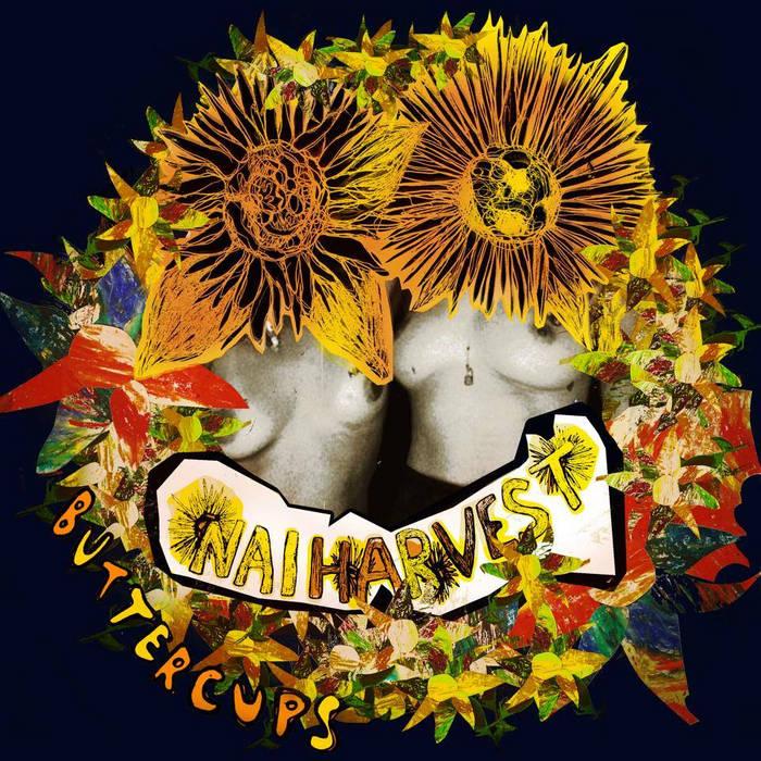 Buttercups cover art