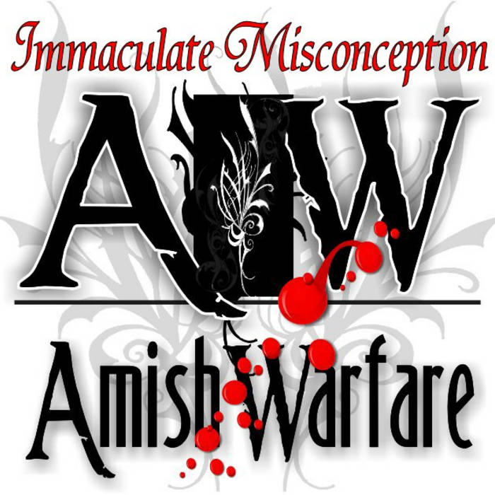 Immaculate Misconception cover art