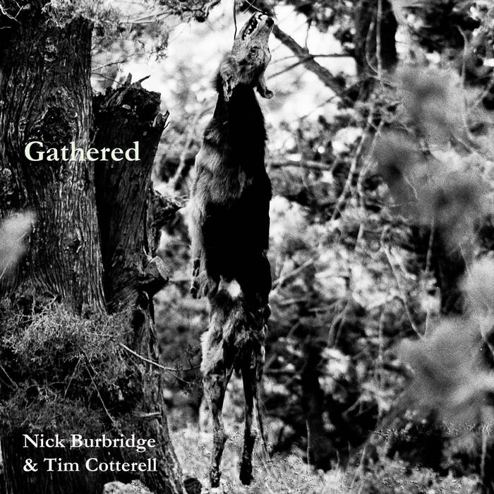 Gathered cover art