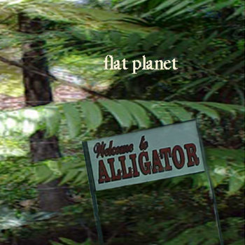 Welcome To Alligator cover art