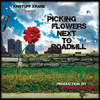 Picking Flowers Next To RoadKill cover art