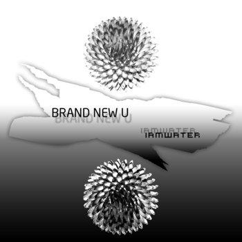 BRAND NEW U cover art