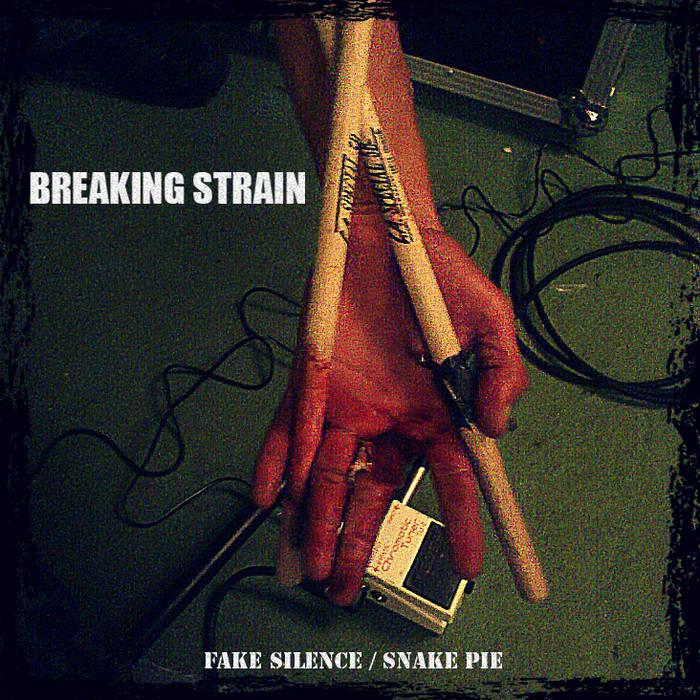 Fake Silence / Snake Pie cover art