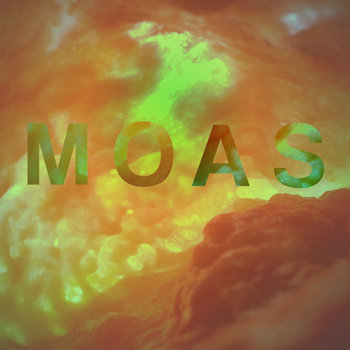 The Moas cover art