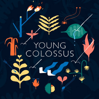 Young Colossus cover art