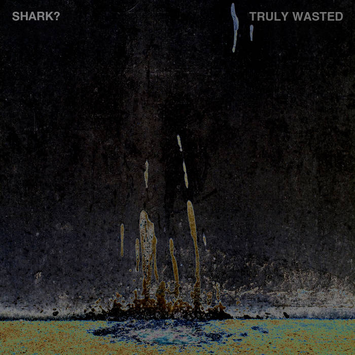 Truly Wasted EP cover art