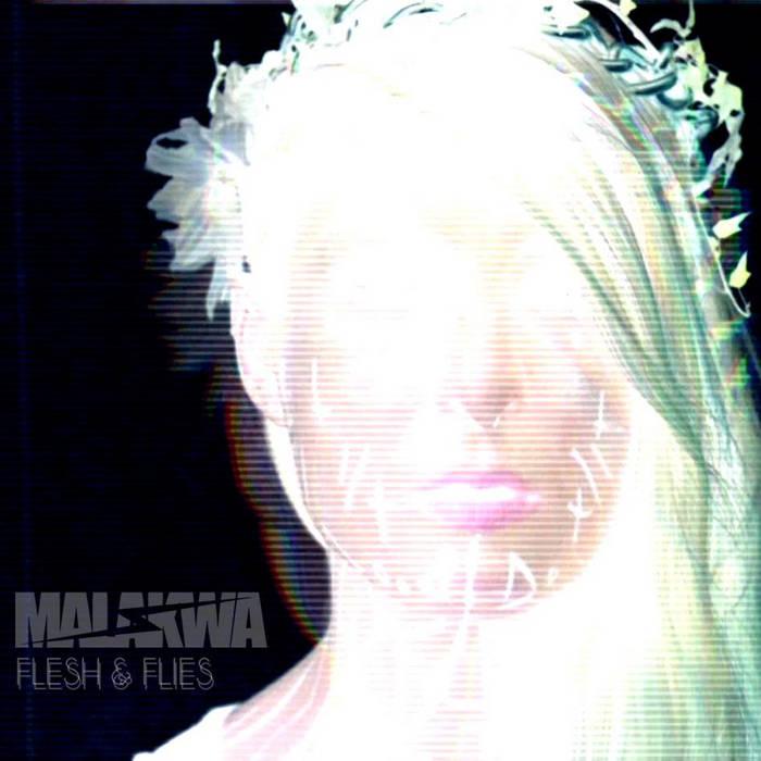 FLESH & FLIES cover art