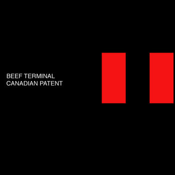 Canadian Patent cover art