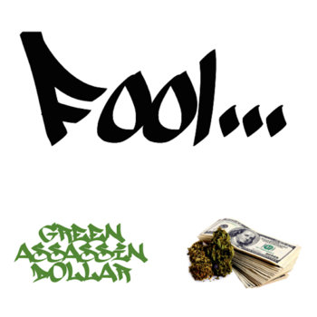 Fool... cover art