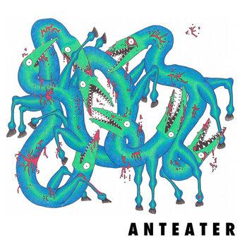 Anteater cover art