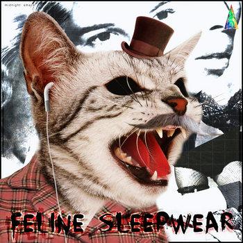 Feline Sleepwear cover art