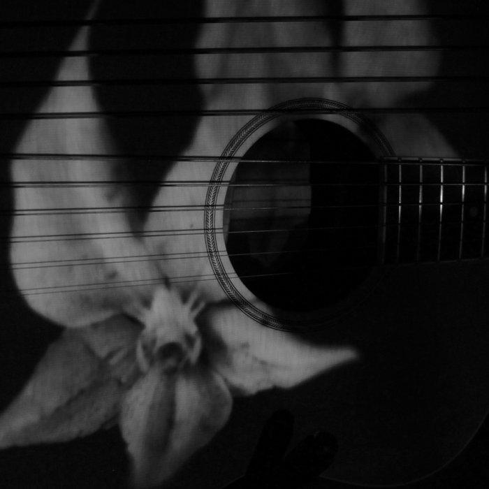 Acoustic Ambient Improvs (1-10) cover art