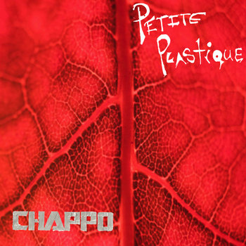 Petite Plastique (Moonwater B-sides) cover art