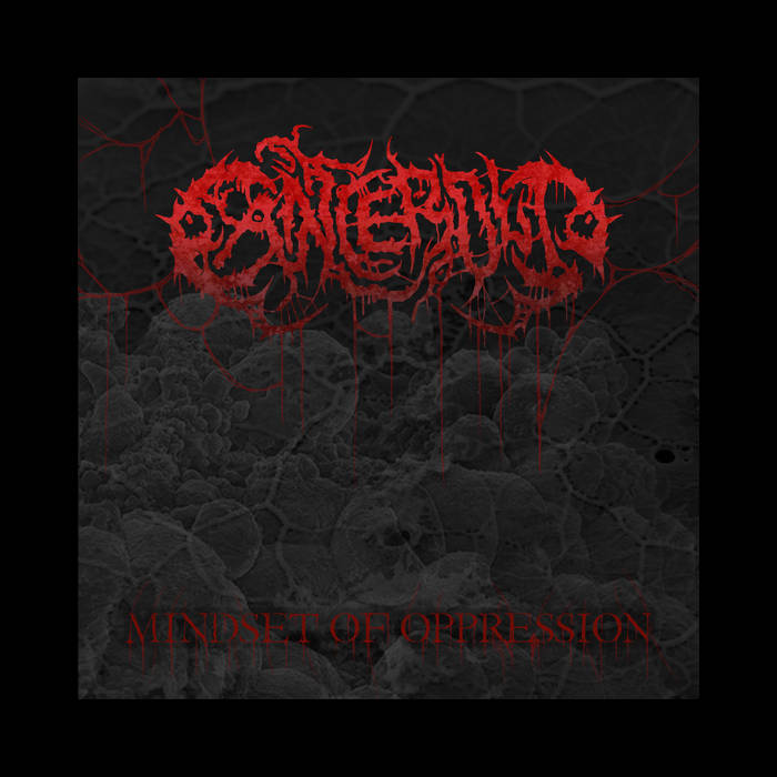 Mindset Of Oppression cover art