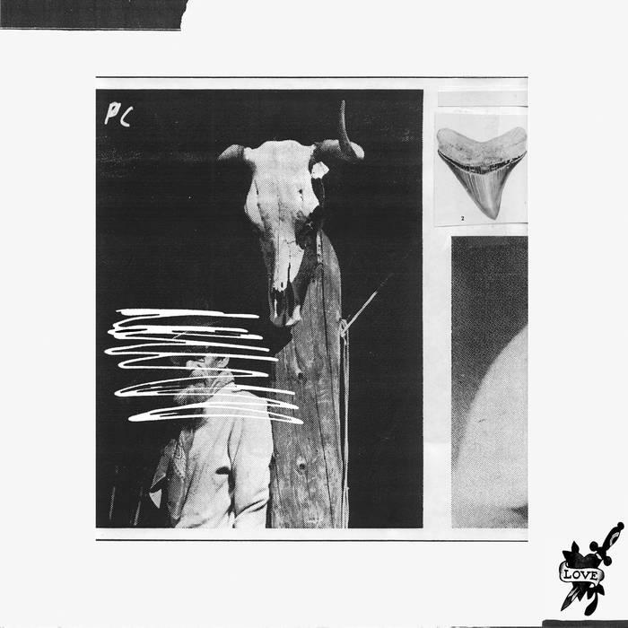 TOXIC LOVE LP cover art