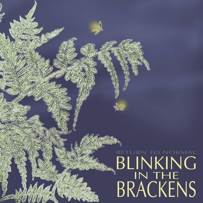 Blinking in the Brackens cover art