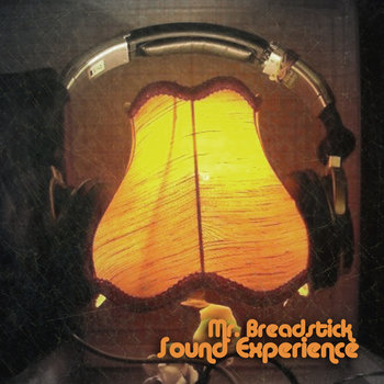 Sound Experience cover art