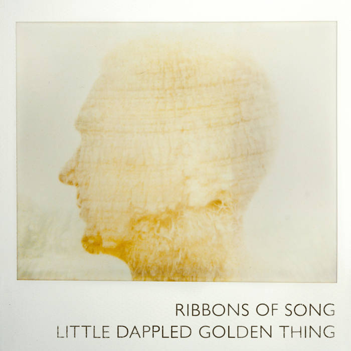 Little Dappled Golden Thing cover art