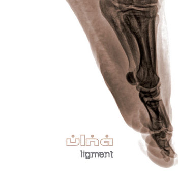 Ligment cover art