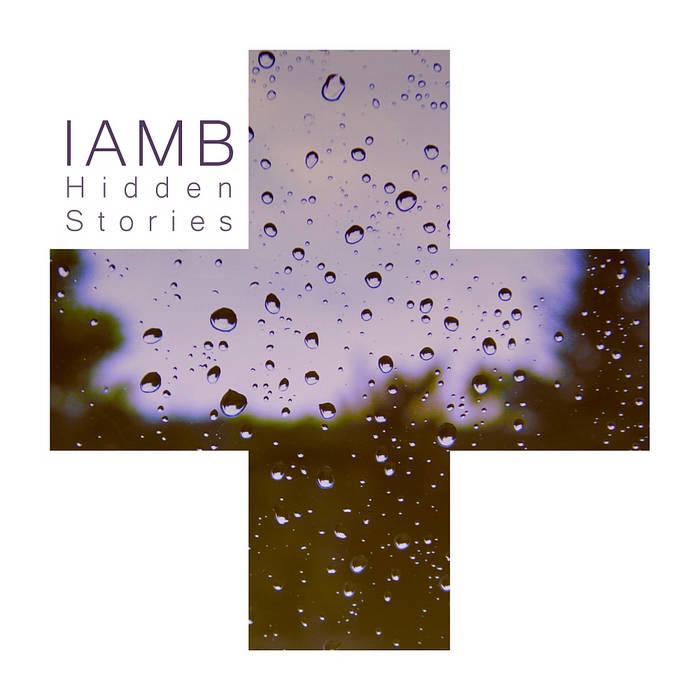 Hidden Stories cover art