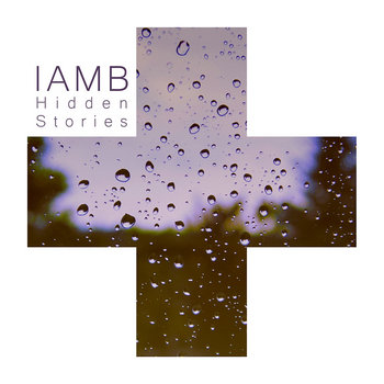 Hidden Stories cover art