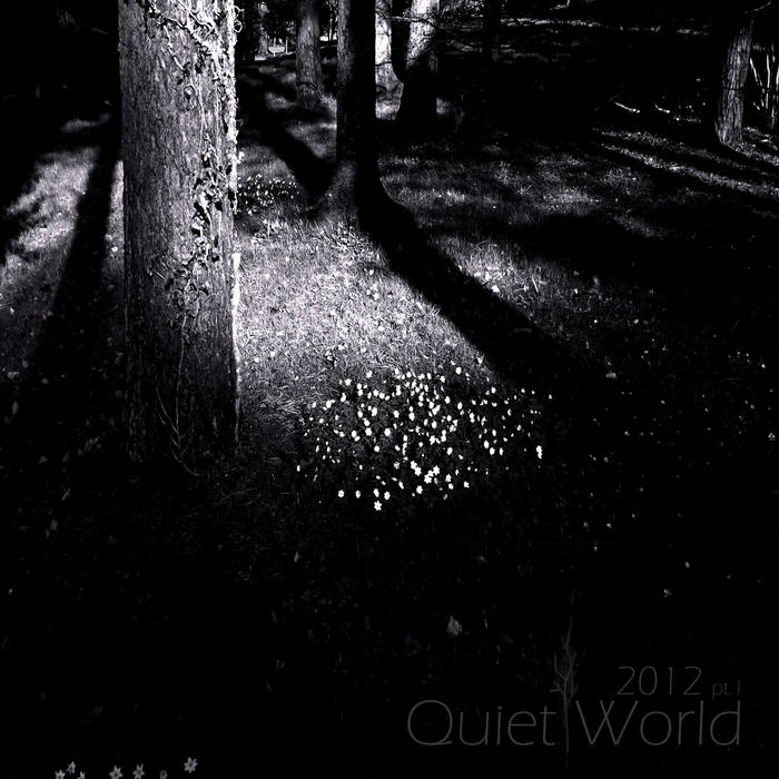 Quiet World 2012 pt.1 cover art