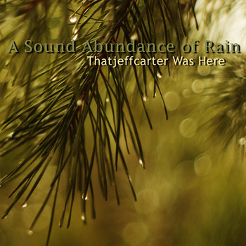 A Sound Abundance of Rain cover art
