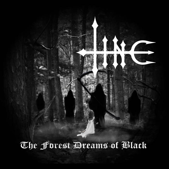 The Forest Dreams of Black cover art