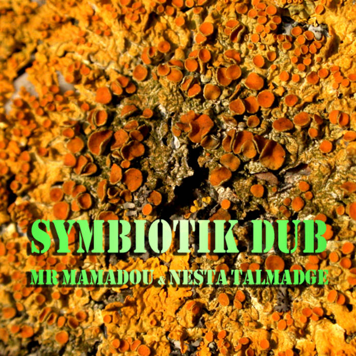 Symbiotik Dub EP feat. Nesta TALMADGE cover art