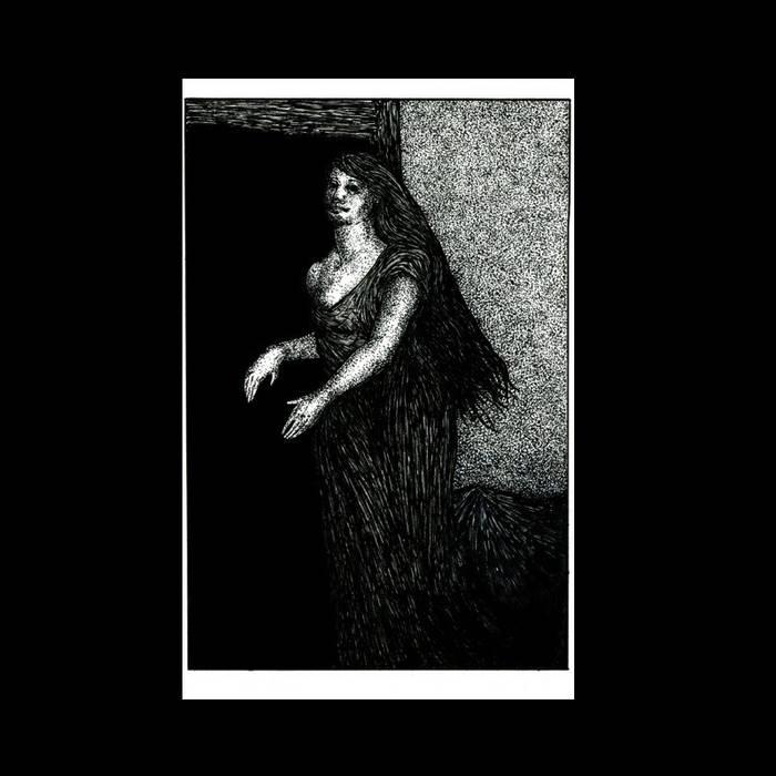 Cara Neir / Venowl cover art
