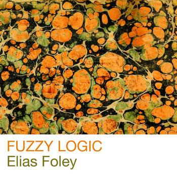 Fuzzy Logic cover art