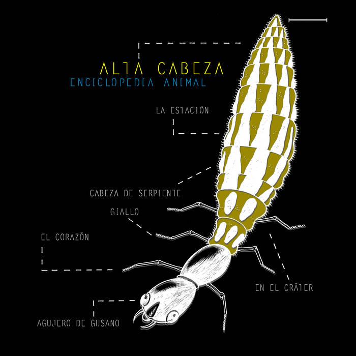 Enciclopedia Animal cover art