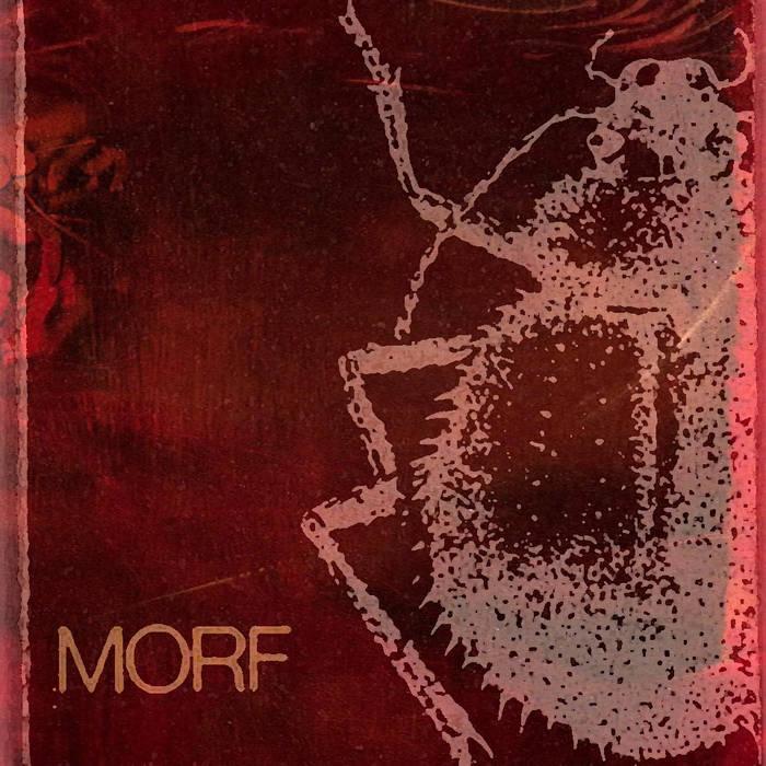 URS ILK - Morf cover art