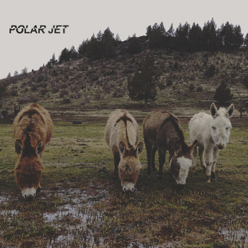 PolarJet cover art