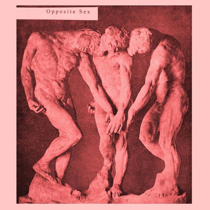 Opposite Sex cover art
