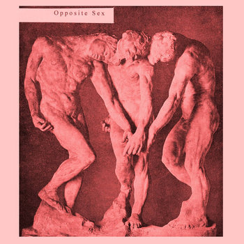 Opposite Sex cover art