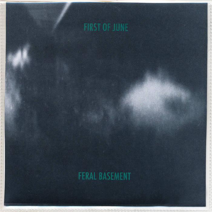 Feral Basement cover art