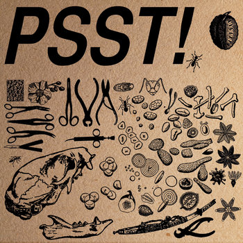 PSST! cover art