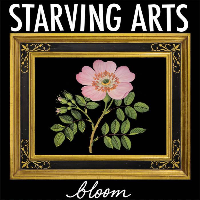 Bloom cover art