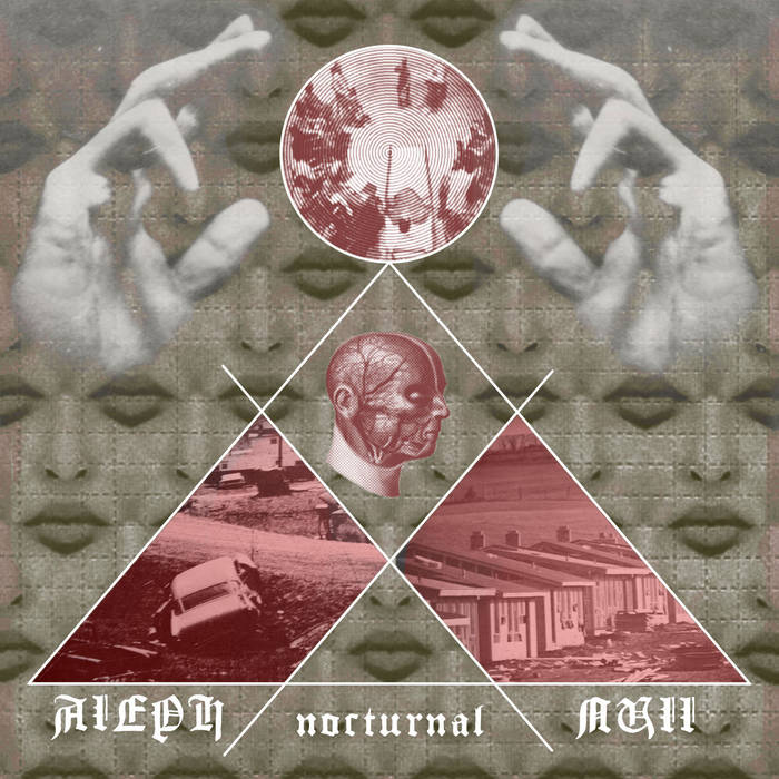 Nocturnal cover art
