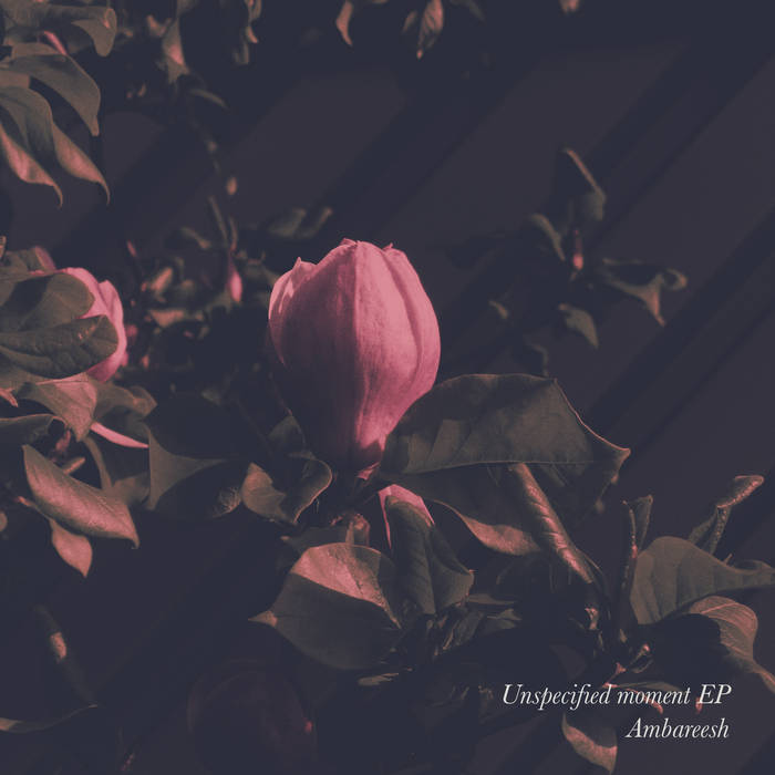 Unspecified moment EP cover art