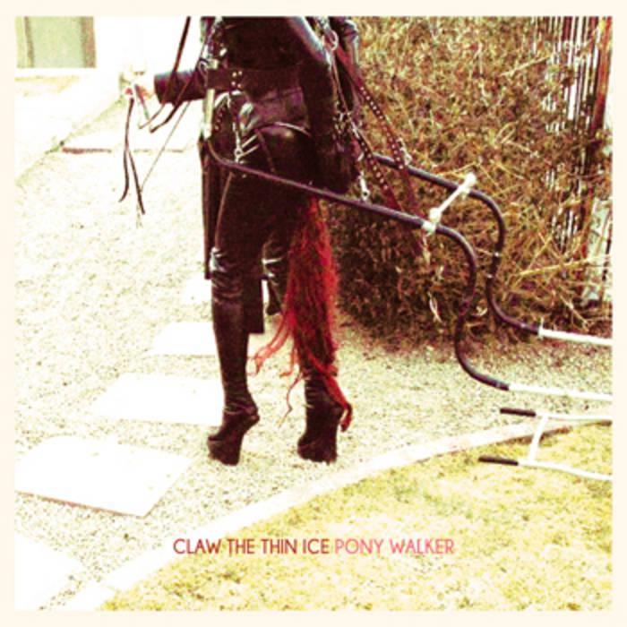 Pony Walker cover art