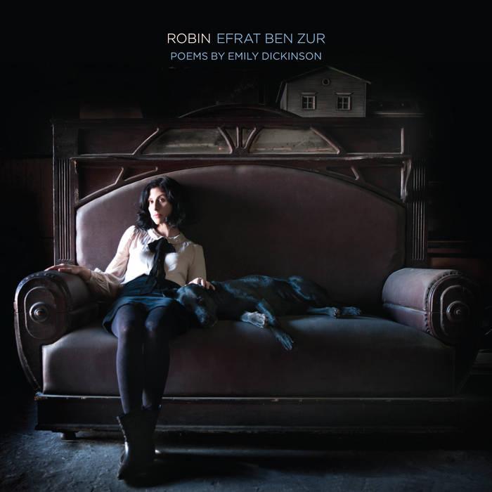 Robin cover art